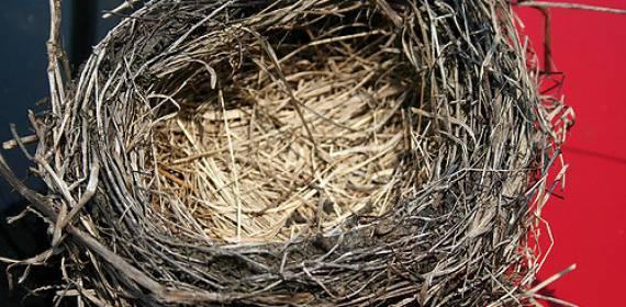 הצצה לקליניקה ייעוץ זוגי לקן המתרוקן, שחיקה בזוגיות